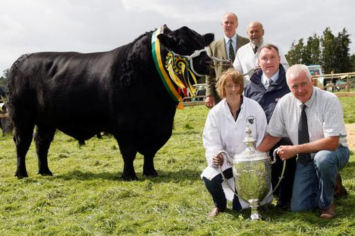 Rosemead Karona, owned by Albert and Jennifer De Cogan of Castlemartyr, Co Cork, won the All-Ireland Perpetual Trophy for the third year in succession. Pictured at the presentation are judge Victor Wallace, Garvagh; Mark O'Rourke, Univet Ireland Ltd, sponsor; and John Tait, president, Irish Aberdeen Angus Association.
