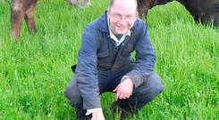Results: Dominic Leonard on his IOGFAcertified farm in Laois.