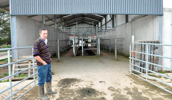 Former IFA livestock chairman Michael Doran has already completed the first phase of his planned conversion from beef to dairying.
