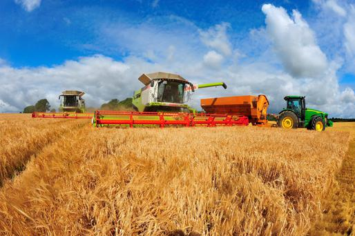 Two of the biggest combines in the country cutting for Walter Furlong at New Bawn near Enniscorthy in Wexford. The Claas 780 tracked combines operate 35ft headers and harvest 10ac per hour each. Pic. Roger Jones