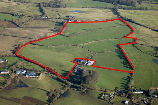 A 56ac non-residential farm with extensive sheds near Wilkinstown, Navan Co Meath is for sale and is guided at between €8,000 and €10,000/ac.