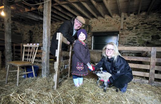 Brendan McArdle with his daughter Eilish and grand daughter Isobel in the nuresy on the farm near Knockbridge, Co Louth. Photo: Dave Conachy