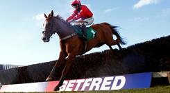 Festival hope: Queen Mother Champion Chase contender Sire de Grugy