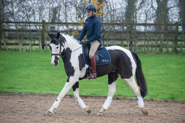 Andrew Hoy with the Irish-bred piebald Right to Play's Jack Sparrow who made a stunning debut on the British eventing scene.