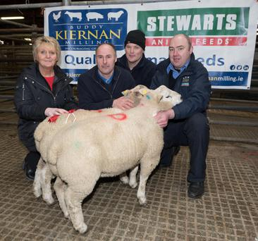 Donegal champion: At the Raphoe Livestock Mart spring lamb show and sale were (l-r) mart manager Anne Harkin, show winner John McConnell, show judge Alan Lecky, and Paul McGlynn, Kiernan Milling - Photo: Clive Wasson.
