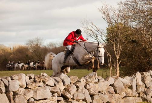 Insurance is essential for equestrian sports such as hunting