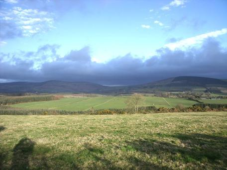 A 59ac grass or tillage farm at Knockatomcoyle, Tinahely, Co Wicklow is coming to auction with a guide price of €470,000