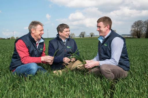 Pictured at last week's Teagasc spring crop walk at the DAFM Trial Farm, Ballyderown, Fermoy, Co. Cork were speakers Ciaran Collins, Teagasc Moorepark; Tim O'Donovan, Teagasc Tillage Specialist and Eamonn Lynch, Teagasc Midleton Photo: O'Gorman Photography