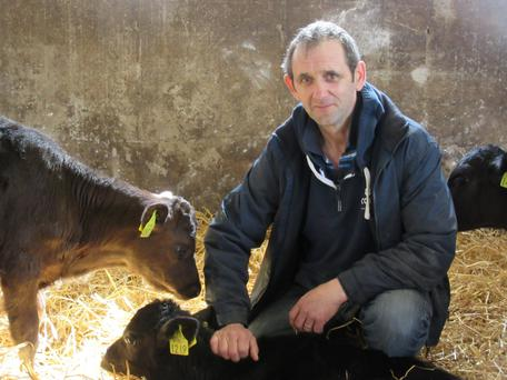 Joe Farrell rears and finishes Angus heifers and Friesian bulls on his farm at Castledermot, Co Kildare