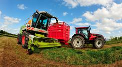 The perfect cut of silage