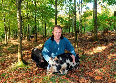 Justin Good pictured in his prize-winning forest outside Belturbet, Co Cavan. The forest has 15 varities of broadleaf and a population of pigs, geese and turkeys Photo: Adrian Donohoe