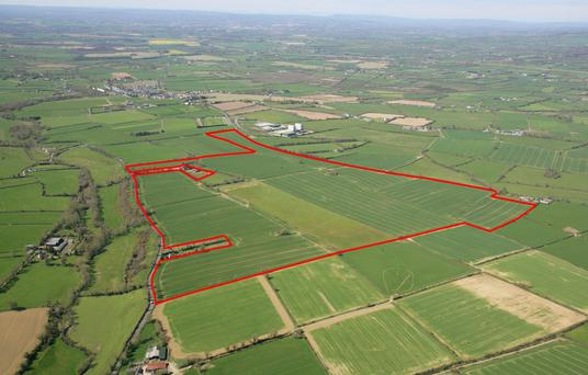 Sizeable: The 178ac farm will be offered in lots or as an entire with a guide price of €10,000-€12,000/ac