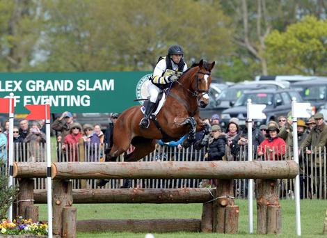 Launching pad: The 2014 Badminton winner Paulank Brockagh, is a graduate of the Future Event Horse League, now relaunched as the Young Eventhorse Series