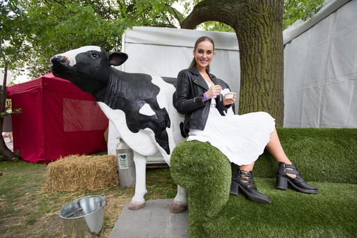 Roz Purcell stops by the National Dairy Council's 'Skillery' at last weekend's Taste of Dublin festival in the Iveagh Gardens.