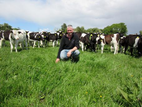 Taking stock: Pat Bowden plans to increase the stocking rate on his Kilkenny farm