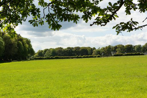 The Sisters of Bon Saveur are selling Carriglea farm in Co Waterford