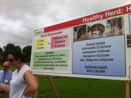 Record numbers turned out at Teagasc's biennial open day