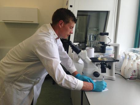 Attention to detail: John Heslin at work in Teagasc's research centre at Grange, Co Meath
