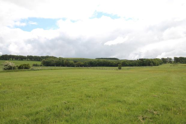 Land for sale at Kilteel, Co Kildare
