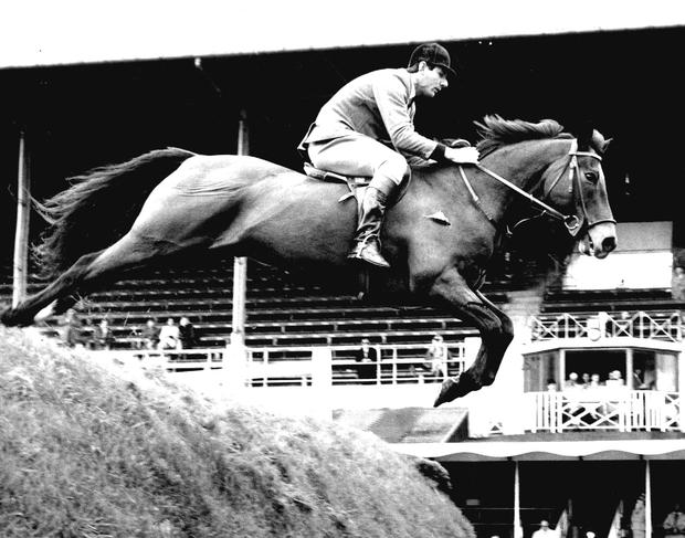 Dundrum who dominated show jumping in the 1960s when ridden by Tommy Wade is considered one of the greatest show jumpers ever.