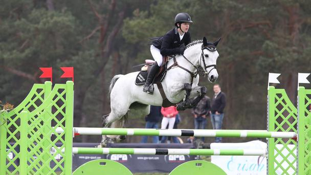 Clive Swindell's seven-year-old Cul Bawn Mistress, who became the first pony to win three classes back to back, in Fountainebleu, France earlier this year. Photo: Dick Shakespeare