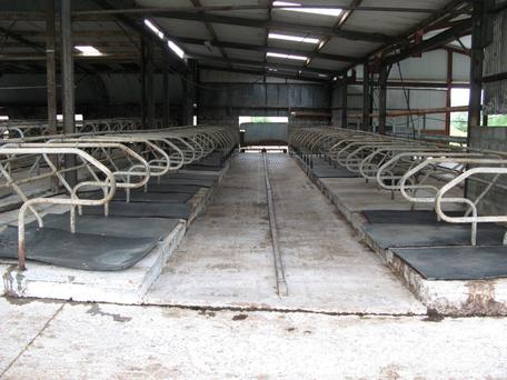 Newtownshandrum milking parlour