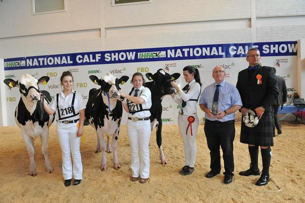 Top calves: The winning line up in the Mature Calf class at last week's IHFA National Calf Show pictured with (from left) handlers Louise Sinnott, Claire Kirby and winner Alice Magan, sponsor Liam Gannon from Volac and judge David Gray. The event was held at The Hub, Cillin Hill, Kilkenny. Photo: Roger Jones.