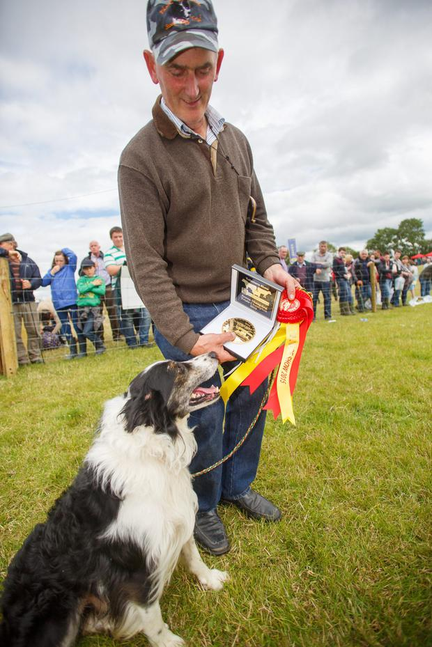 Frank Cashin, winner of the open final in the Sheepdog Trials with Jip at the Tullamore Show and AIB National Livestock Show in Blueball, Tullamore. Picture: Jeff Harvey