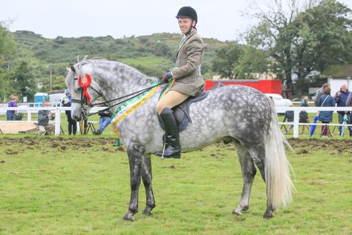 Michael Harty riding the supreme ridden champion Cashelbay Rocket at last week's Connemara Pony Show in Clifden