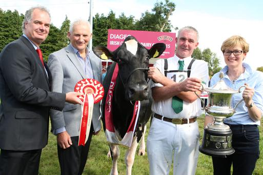 John Barrett from Togher Co. Cork, who bred the winner of the 2015 Diageo Baileys Champion Dairy Cow Competition pictured with (l-r) Breffni O'Reilly, Diageo; Henry Corbally, Glanbia Ingredients and Mairead McGuinness MEP.