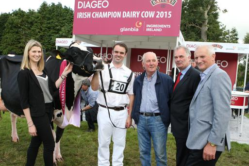 The Reserve Champion at the 2015 Diageo Baileys Champion Dairy Cow competition in Virginia Show was Baldonnel Goldwyn Sublime. Pictured with the winner were: Claire Prior, Diageo; handler Tadgh Burke; breeder Cyril Murphy from Co. Dublin; Breffni O'Reilly