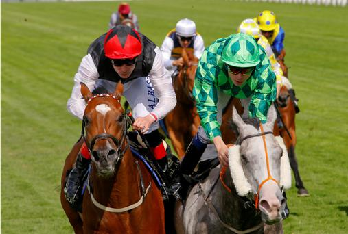 Free Eagle (left) ridden by Pat Smullen wins from The Grey Gatsby, ridden by Jamie Spencer, in the Prince of Wales Stakes at Royal Ascot last June