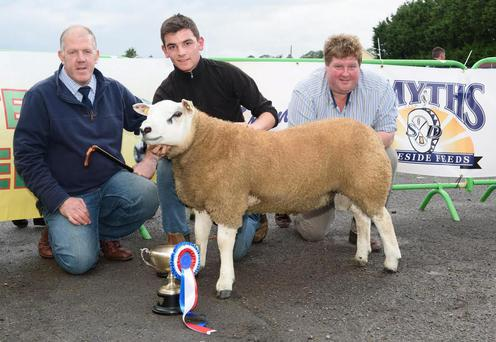 Judge, Murray Annette with Sean McHugh, McHugh Brothers Burt, Males Show Reserve Champion and Bobby Patterson, Smyths Feeds at the Donegal Texel Breeders Show and Sale at Raphoe Livestock Mart. Photo Clive Wasson