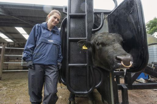 Maeve O'Keefe from Ballynoe, Co. Cork with her innovative cattle crush which reduces the workload for handling livestock