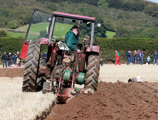 John Slattery (81) from North Tipperary in action on his Case IH Tractor in the Intermediate Conventional Class at last week's Ploughing. John was the oldest competitor at the championships. Photo: Frank Mc Grath.