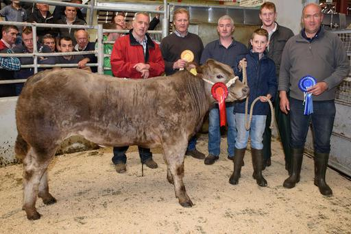 Show judge Joshua Miller, Tony McMenamin (collecting for Thomas Pearson 3rd), mart manager Brian Crawford, Luke Barnett, (winner), judge Christopher Johnston and Francis Browne (2nd) after the 2015 Charlaois Heifer Class at Stranorlar and Ballybofey Mart