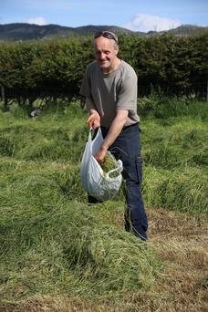 Michael Duffy collecting grass last July for a refractometer (sugar percentage test) on his farm in Co Donegal.