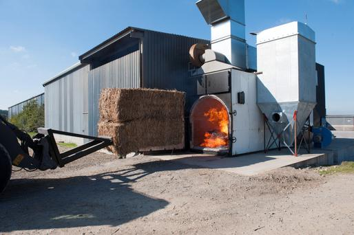 Patrick Nolan has invested €200,000 in a biomass burner for his tillage farm in Co Carlow. He says burning two bales of miscanthus produces enough to dry around 30t of wheat, a job that would require 200 litres of diesel.