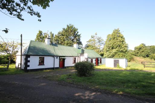 The tin-roof cottage at Gorteen, Nurney, Co Kildare is in need of renovation.