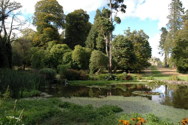 A view of the gardens and ancient pond at Kilmacurragh Gardens, Co Wicklow