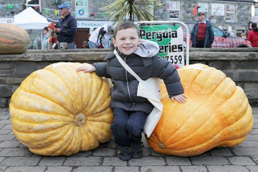 Daragh Cullen From Cornafein, Co Cavan with two pumpkins that he entered into the 2014 Virginia Pumpkin Festival - the pumpkins weighed in at 192 labs and 254 lbs.