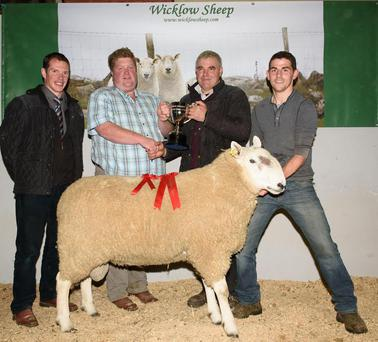 Bobby Patterson, Smyths Daleside Feeds presenting Sean McHugh with the trophy for Show Champion at the Wicklow Cheviot Sheep Breeders show and Sale in Ballybofey and Stranrolar Mart. Also pictured are (left) Robert Gourley, auctioneer and Paul McHugh. Photo: Clive Wasson.