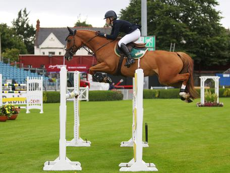 Beech Hill Lucia is among the horses eligible for the mare championship