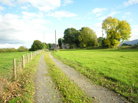 The 61ac farm is located at Mount Pleasant, Fenagh near Bagenalstown, Co Carlow