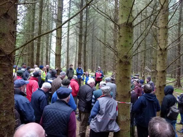 Marina Conway of the Western Forestry Co-op and Donal Whelan of the Irish Timber Growers Association discuss timber quality at the recently held field day near Dromod, Co Leitrim. Teagasc.