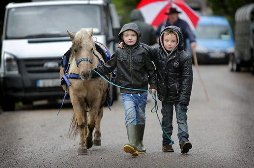 Willie Hegarty, Charleville and Mike O'Dononghue, Limerick, at the Gap of Dunloe Annual Horse Fair .Photo: Valerie O'Sullivan