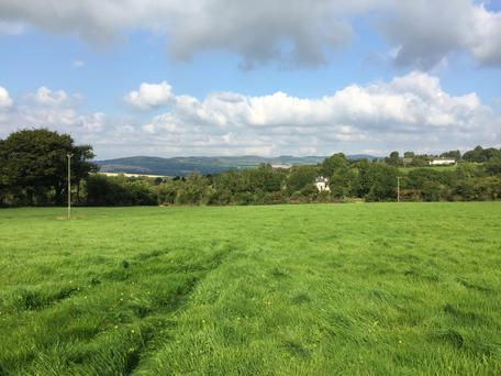 A 41ac paracel of land at Ballybrado, Cahir sold for €12,560/ac at auction recently