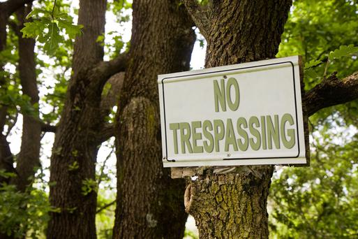 'No trespassing' signs are not considered to be legally adequate warning to the trespasser about potential hazards such a bull in a field.