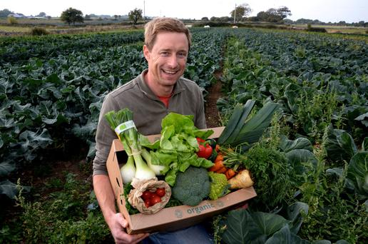 Kenneth Keavey has built up a thriving organic vegetables business on 18ac at Corrandulla in Co Galway