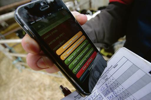 Herdwatch gathers personalised herd information information from the ICBF and the Department and delivers it in app form to the farmer